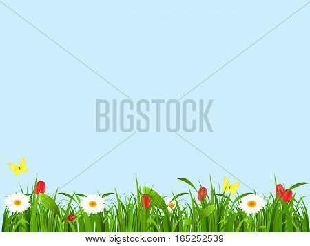 Spring landscape from a grass, flowers and butterflies on a blue background