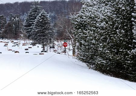 Snow covered road leading to a cemetery with a stop sign.