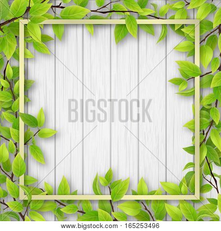 Square frame overgrown tree branches with green leaves on wooden background. Blank for advertising card or invitation.