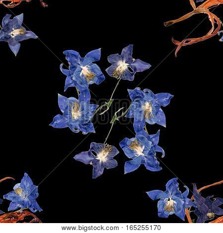 Background Texture Made Of  Aquilegia, Lily And Place For Text