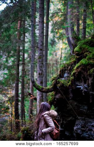 Girl in the forest standing back and looking upwards