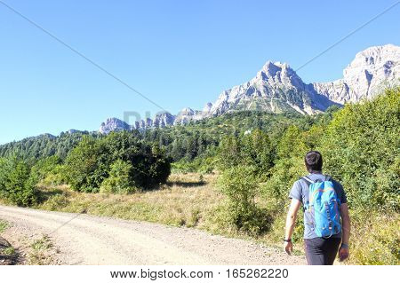Guy Hiking In A Path With Trees And Mountains Surrounded In Pyrenees