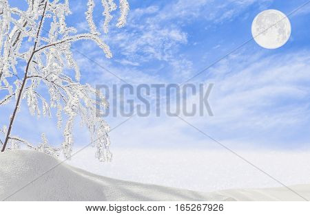 Winter landscape with snow-covered field white hoarfrost on the branch and the moon on a blue sky at dusk close-up