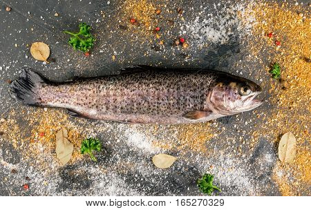 Fresh Raw Fish Brown Trout