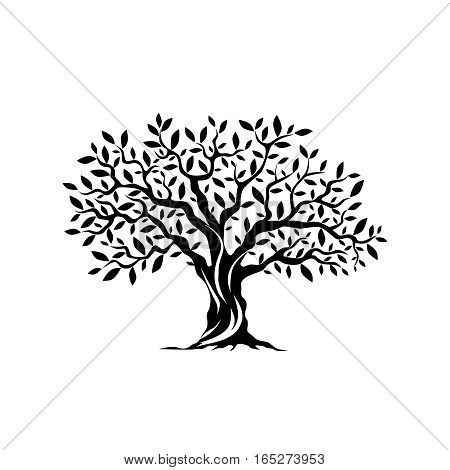 Olive tree silhouette icon isolated on white background. Web infographic modern vector sign.Premium quality illustration logo design concept pictogram.