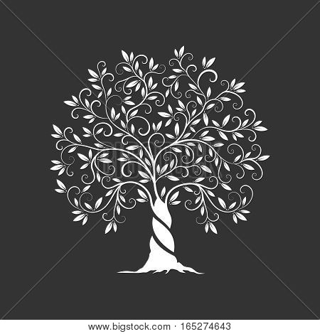 Olive tree silhouette icon isolated on dark background. Web infographic modern vector sign.Premium quality illustration logo design concept pictogram.