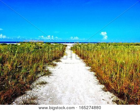 Marco Island Tiger Beach path to tranquility poster