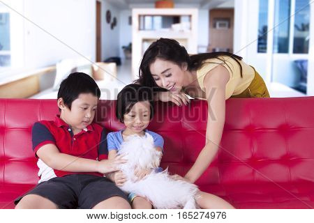 Children and beautiful mother playing with cute dog while touching dog together at home