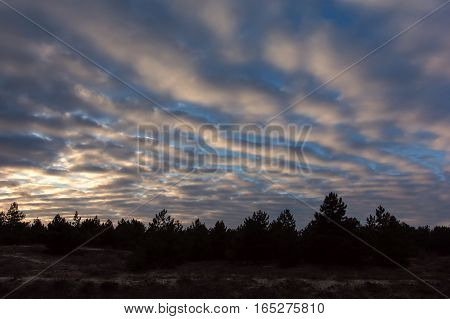 colorful sunset with pocked clouds in the woods. Sky background.