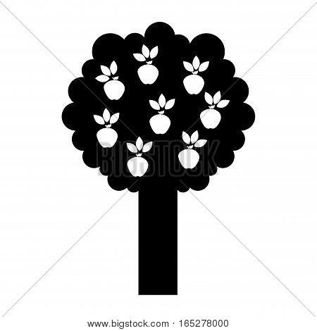 apple tree isolated icon vector illustration design