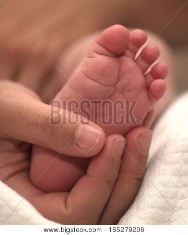 Tiny Newborn Baby Foot In Female Hands.