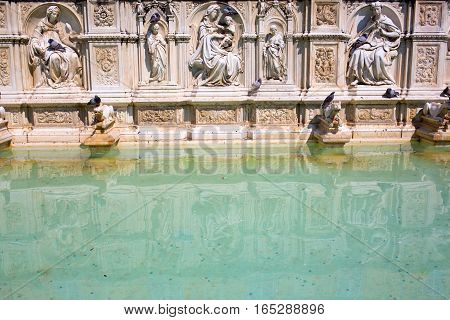 Historical Fonte Gaia In Siena, Italy