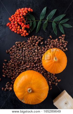 autumn composition with pumpkin and Rowan berries and pine nuts. Top view