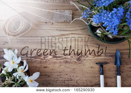 English Text Green Thumb. Sunny Spring Flowers Like Grape Hyacinth And Crocus. Gardening Tools Like Rake And Shovel. Hemp Fabric Ribbon. Aged Wooden Background