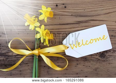 Label With English Text Welcome. Sunny Yellow Spring Narcissus Or Daffodil With Ribbon. Aged, Rustic Wodden Background. Greeting Card For Spring Season