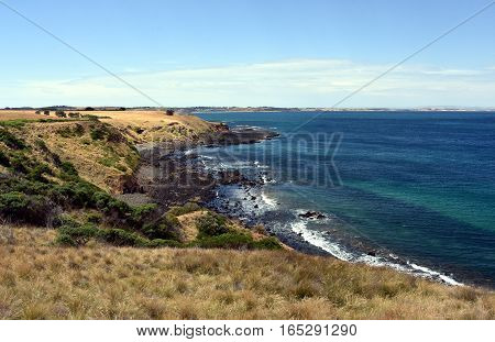 Phillip Island Nature Park - green hills and rugged coastline Victoria Australia. Rocky coastline of the Nobbies in Philip Island Australia.