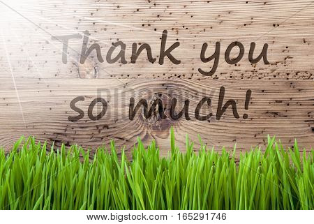 English Text Thank You So Much. Spring Season Greeting Card. Bright, Sunny And Aged Wooden Background With Gras.