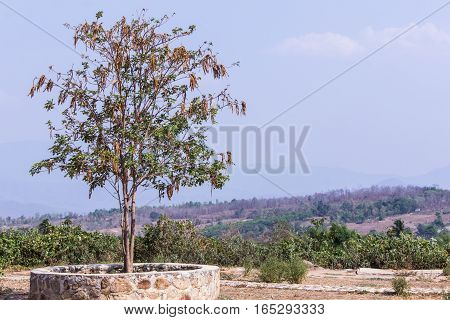 View form Chinese town in pai city Thailand, Santichon