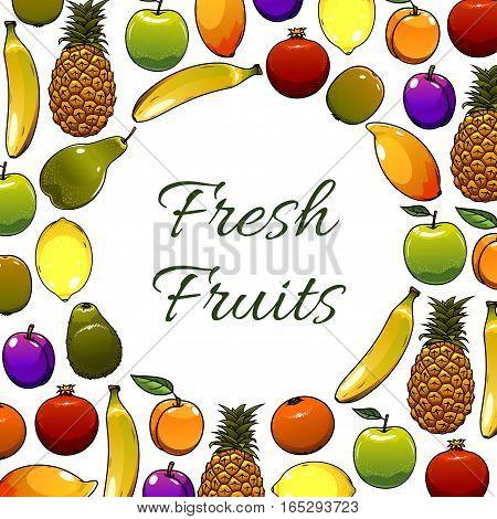 Fruit poster of farm fresh garden fruits apple, pear and plum, juicy citrus lemon, orange or tangerine and pomegranate, exotic pineapple and kiwi, tropical sweet banana and mango. Vector fresh organic fruit harvest design for store or market