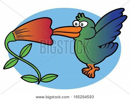 Hummingbird Eating From Flower While Flying Vector Cartoon Illustration