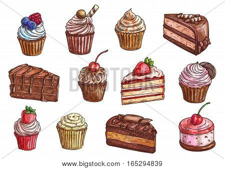 Cakes, cupcakes and pastry desserts vector sketch isolated icons of chocolate muffin, creamy pie or tarts with strawberry and cherry berry on whipped cream topping, vanilla waffle biscuit and cookies for bakery shop, cafe, cafeteria or patisserie