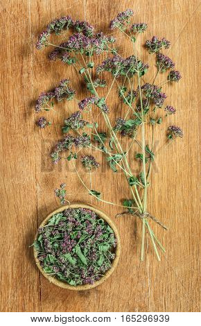 Oregano. Dried herbs for use in alternative medicine spa herbal cosmetics herbal medicine preparing infusions decoctions tinctures powders ointments butter tea bath.