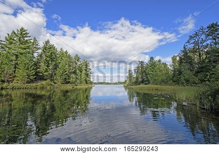 Quiet Cove in Canoe Country on Carp Lake in Quetico Provincial Park