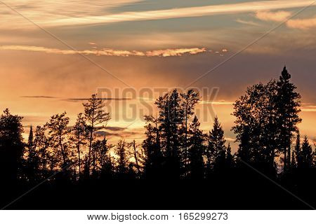 Silhouettes at Sunset in the North Woods on Carp Lake in Quetico Provincial Park in Ontario