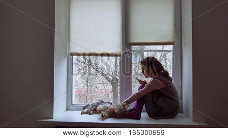 girl teen playing web online game for pet smartphone and dog sitting on window sill windowsill