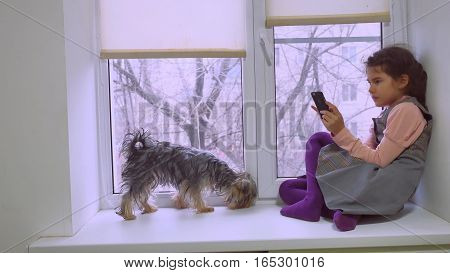 girl teen playing web online the game for smartphone and dog sitting on pet window sill windowsill