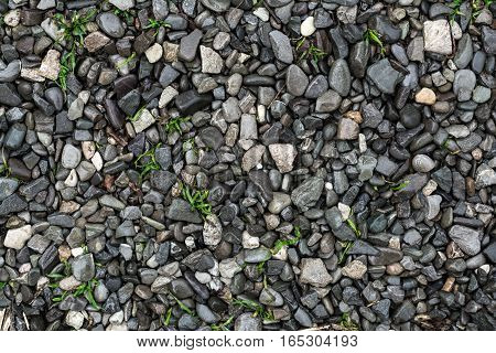 Wet pebbles background,  in garden after a heavy rain