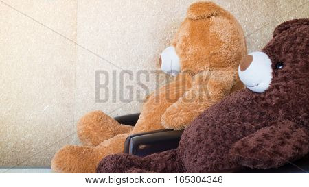 Twin bears on black sofa stock photo