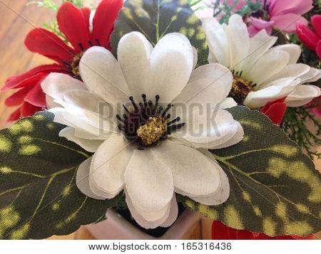 Dry flower White Flowerpot Scented Bouquet 2016