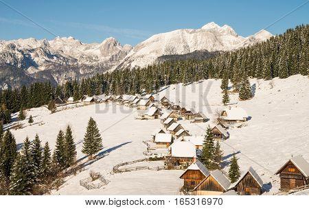 Alpine meadow during winter time in Julian Alps