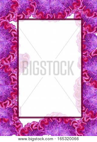 Frame flower celosia purple. Isolated on a white background. Watercolor illustration.