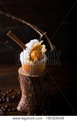 Chocolate cupcakes with white butter cream decorated with winter cherry on a dark wooden background. Decorated with cinnamon sticks coffee beans