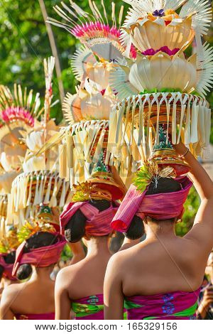 Group of beautiful Balinese women in costumes - sarong with offering for Hindu ceremony. Traditional dances arts festivals culture of Bali island and Indonesia people. Indonesian travel background