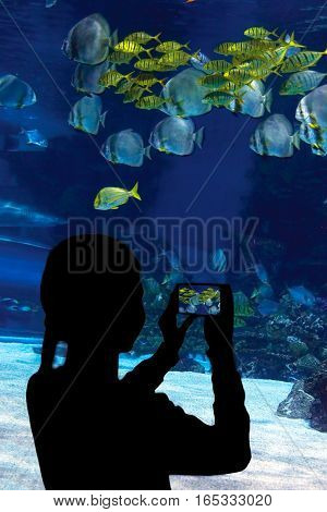 Child watching the shoal of fish and shark swimming in oceanarium