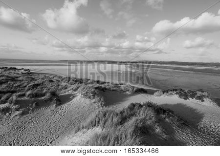 DUNES OF THE TOUQUET, PAS-DE-CALAIS, HAUTS-DE-FRANCE ,FRANCE