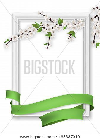 Spring greeting card with blooming branch photo frame and green ribbon. Realistic vector template with blank space for text.