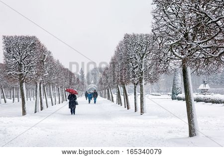 PETERHOF, SAINT - PETERSBURG, RUSSIA - JANUARY 15, 2017: People with umbrellas walk in bad weather in The State Museum Preserve Peterhof. The Upper Garden in winter period