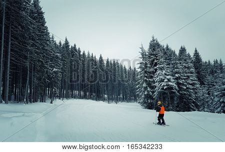 Little boy skiing in the mount on a between the fir forest. Active teenager kid with safety helmet goggles and poles. Ski race for young children. Winter sport for family.