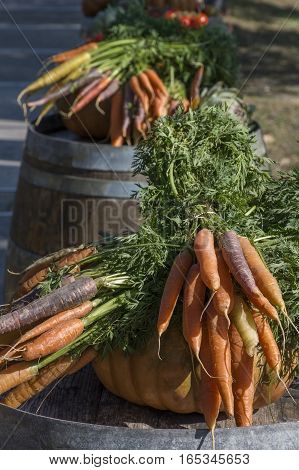 Carrots and pumpkins are on the barrels in the sunlight