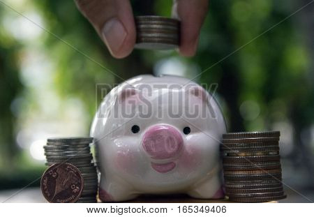 save money, save piggy save money concept