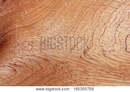 Close-up beautiful wood grain of the wood