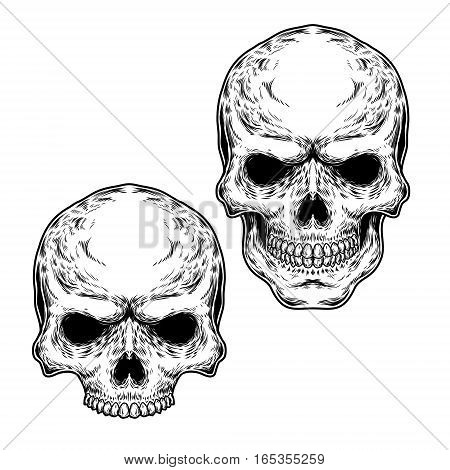Collection of illustrations of skulls, engraving. Print for T-shirts