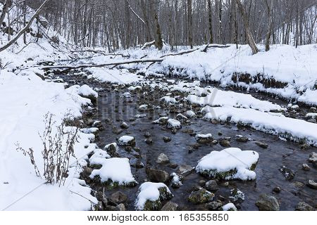 A creek in the woods in winter.