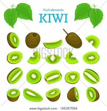 Vector set of ripe tropical kiwi fruits. Kiwifruit peeled, piece of half slice seed. Collection of delicious green kiwi designer elements appetizing looking for packaging of juice breakfast halth food