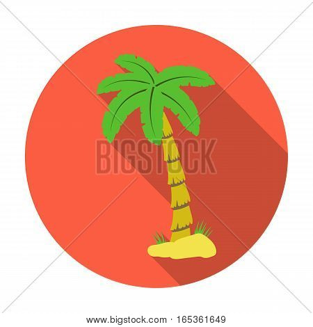 Palm tree icon in flat design isolated on white background. Brazil country symbol stock vector illustration.
