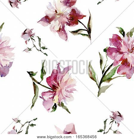 Seamless pattern with beautiful open pink peonies and buds on white background. Watercolor painting. Hand drown.